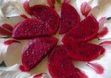 P1250887 pitaya y hibiscus
