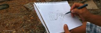 Rycardo on site brainstorming P1400418