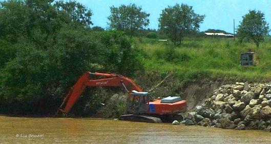 river's falling nature strikes back 026