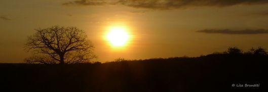 ceibo sunset jun 1 P1520083