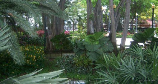 green ecuador gye botanical gardens