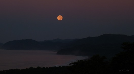 Predawn eclipsed moon - Setting over Samara Costa Rica