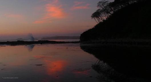 Playa Rosada, Nicaragua  - Calm Reflections