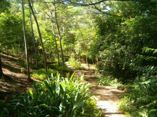 garden path august 2004