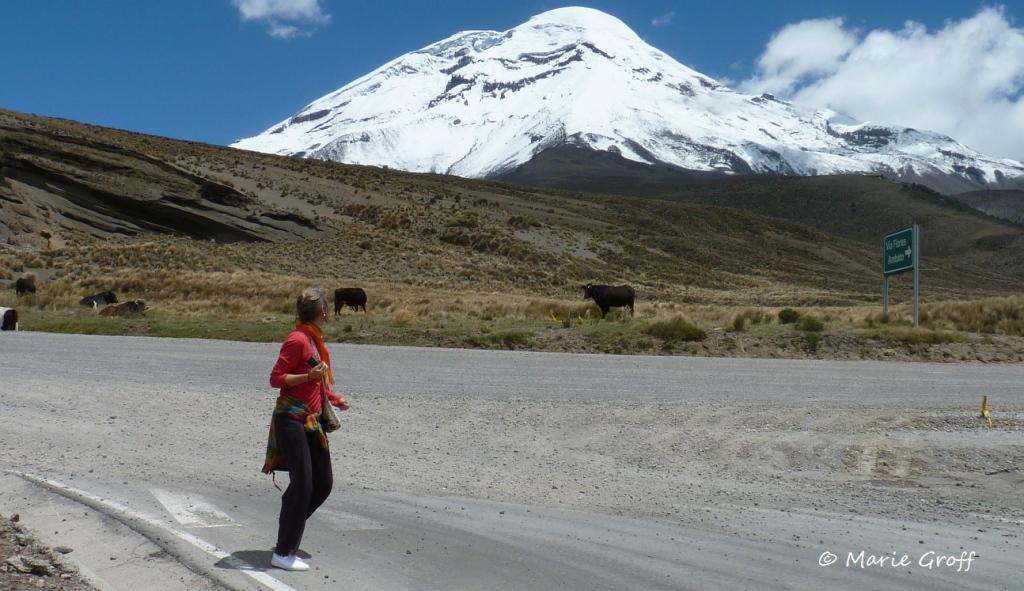 One last look at Chimborazo!