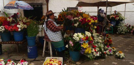 Cuenca Ecuador Flower Market