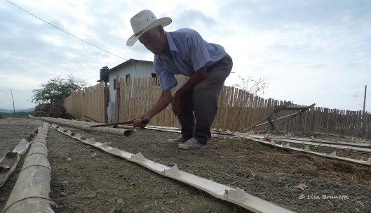 Pancho quietly works while his sons construct the bamboo supports.
