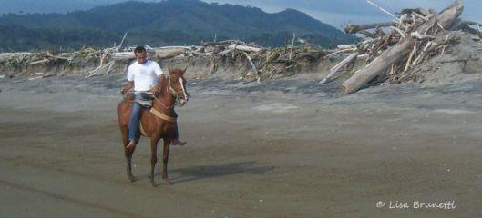 01 la division equestrian xavier for marujan