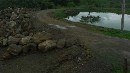 good morning mud P1430495