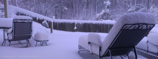 Snow Lounging, Anyone?  Photo by Karen Koen, Little Rock, Arkansas USA