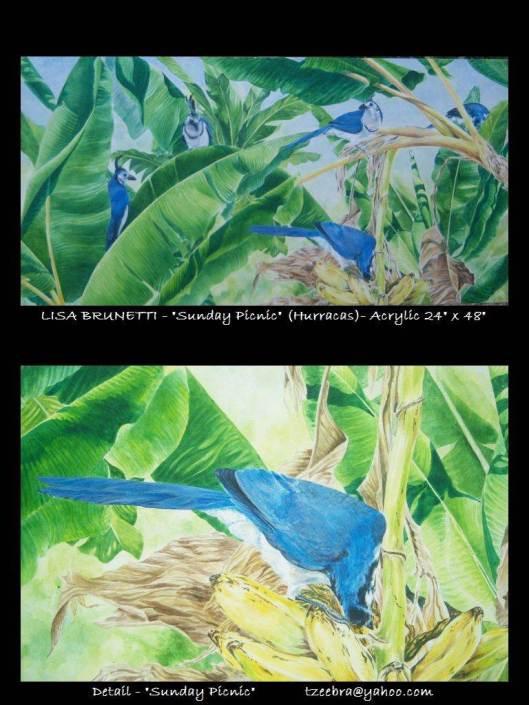 Acrylic Study of Magpie Jays- Costa Rica
