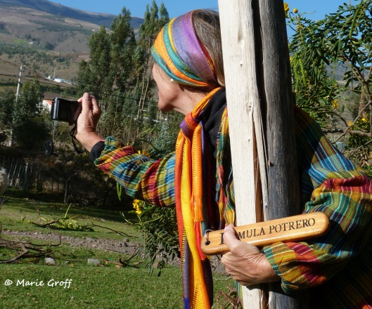 Andean colors...