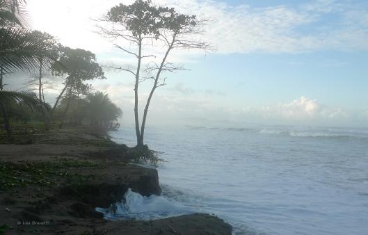 HIGH TIDES - Playa San Miguel, Costa Rica