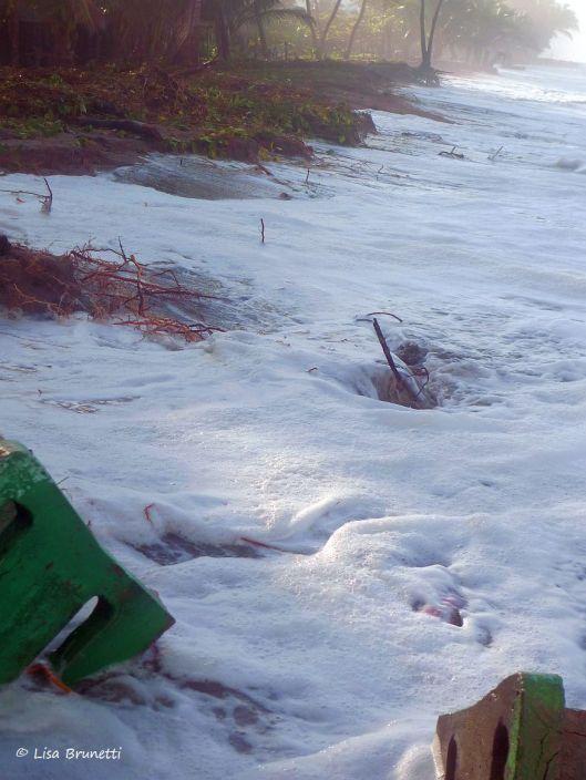 P1140825 hig tides