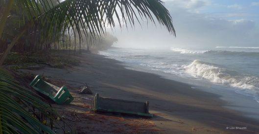P1140836  hig tides
