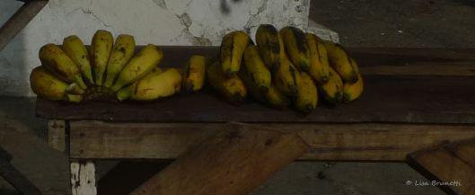 P1550662 bananas