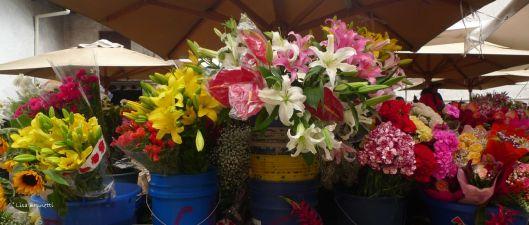 From the Cuenca Flower Market (Ecuador)
