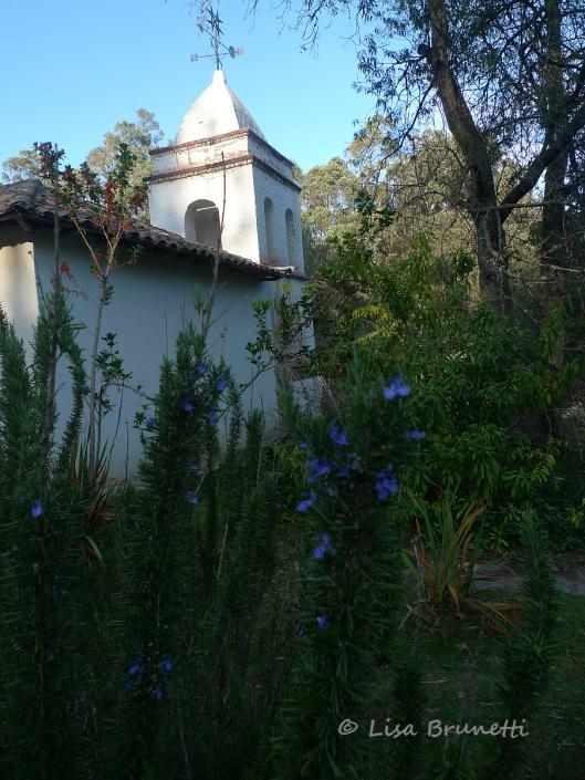P1570595 hacienda guachala iglesia y flowers