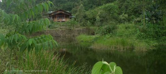 P1660872 mindo lake