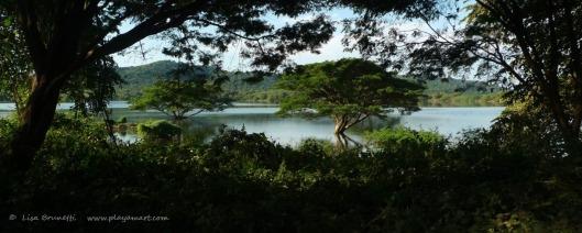 nicaragua detour near hac iguana