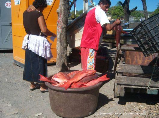 Pargo (Red Snapper)  Pescado/Pez = Fish