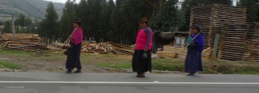Riobamba-Cuenca Drive