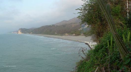 Punta Prieta - looking up the coast to Punta Blanca
