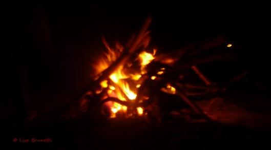 P1610003 la division beach bon fire
