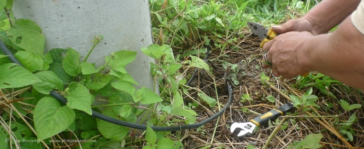 The ground wire had been ripped away from the ground.