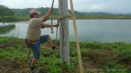 P1680237 climbing post
