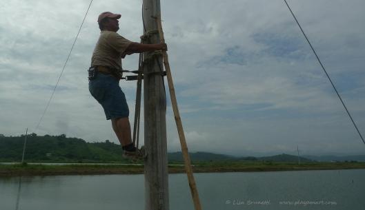 P1680248 electricity climbing post