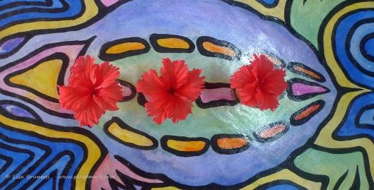 P1680429 hibiscus tortuga bodega floor