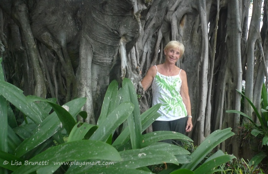 Hmmmm, do we recognize someone in this picture?!  Barb poses in Guayaquil's Malecon Gardens.
