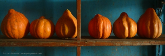 How's this for jump-off-the-shelves color?!  I bought lemons, onions, green peppers, broccoli --- but photographed the squash!