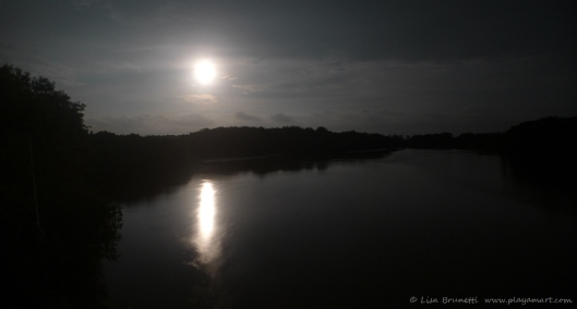The moon sets over the river.