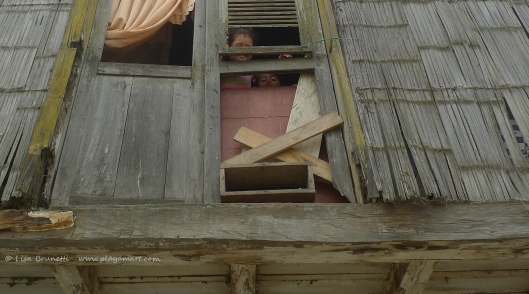 P1700272 jama windows