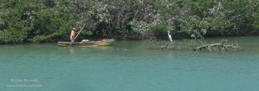 P1620367 fisherman y egret