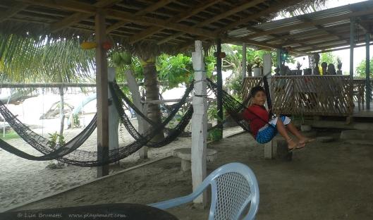 P1700565 la division alexandro swing hammock