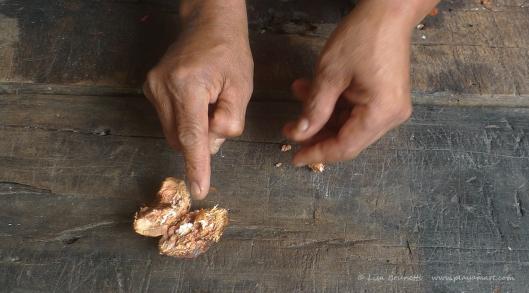 P1700569 ramons hands almendro