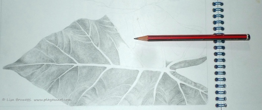 P1720831 leaf in progress pencil