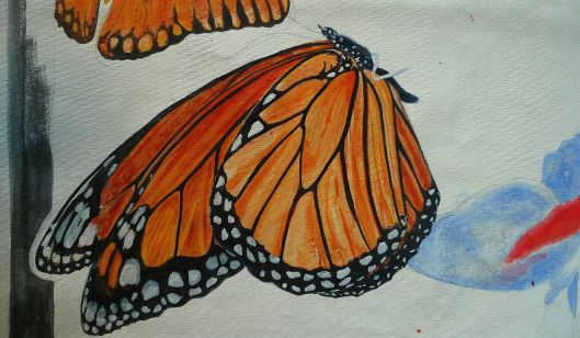 Monarch in Progress - Copyright Lisa Brunetti