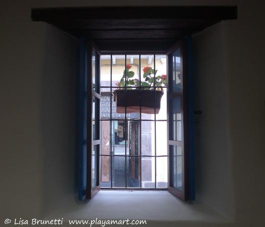 Watercolor Museum - Geranium Window