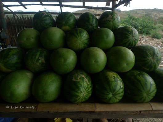 Watermelons weight much more, but the price is always fair.