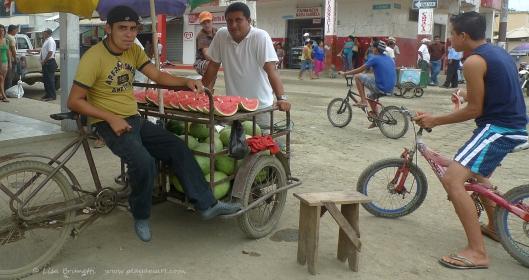 P1690889 jama sandia watermelon bicycles