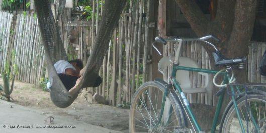 hammock blisss2