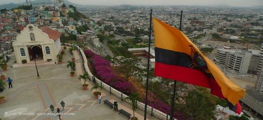 P1590988 ecuador flag guayaquil