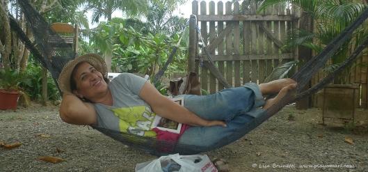 P1780833 NIEVE hammock