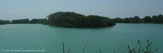 P1800434 rio jama full aguaji - Copy