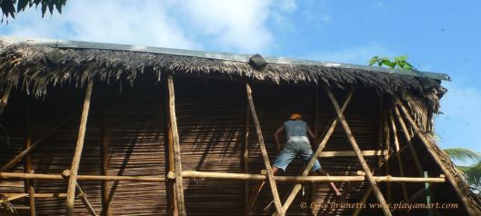 Removing palm thatch roof - peering inside