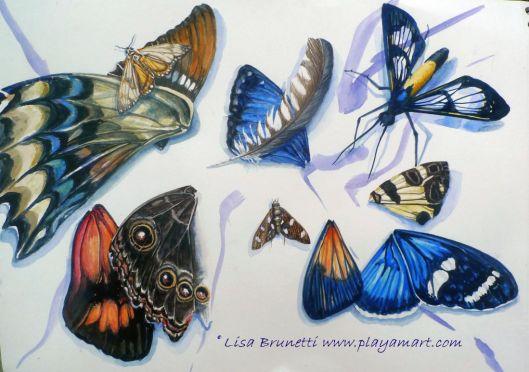 P1850570 trocitos watercolor 2